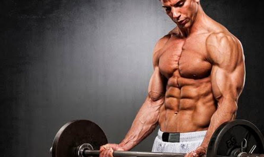 5 Best Exercises for Bigger Arms to get Size Increased within 4 Weeks